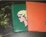 Drie poëziealbums uit resp. 1888, 1962-1969 en 1969?1971.